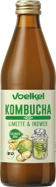 Kombucha Limette Ingwer (0,33l)