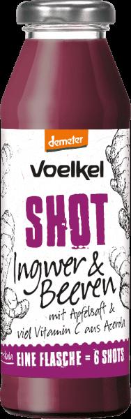 Shot Ingwer & Beeren (0,28l)