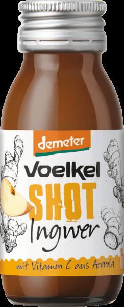 Shot Ingwer (60ml)